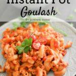 Goulash pasta on plate