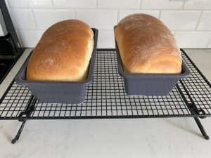 Bread loaves in pans