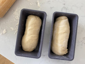Two bread dough loaves in pans
