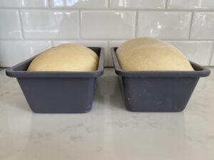 Bread dough rising in loaf pan